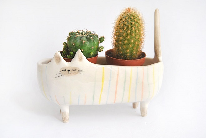 Cat Planter / Barruntando