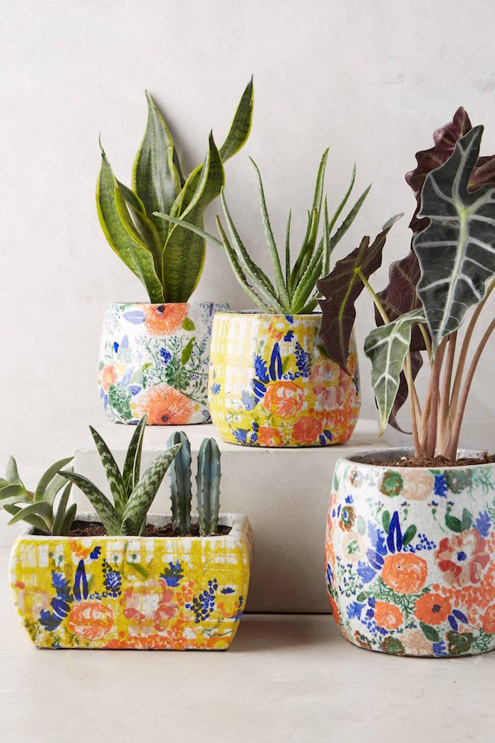 Bloomfield Pots / Anthropologie