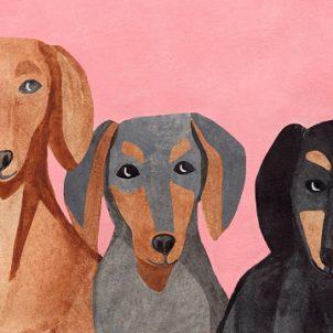 Illustration by Iga Kosicka