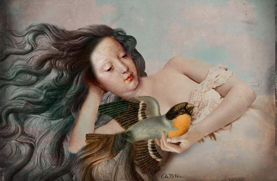 Der Singvogel, by Catrin Welz-Stein.