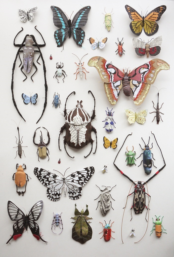 Paper insects / Kate Kato