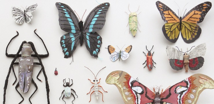Handcrafted plants and insects by Kate Kato ...