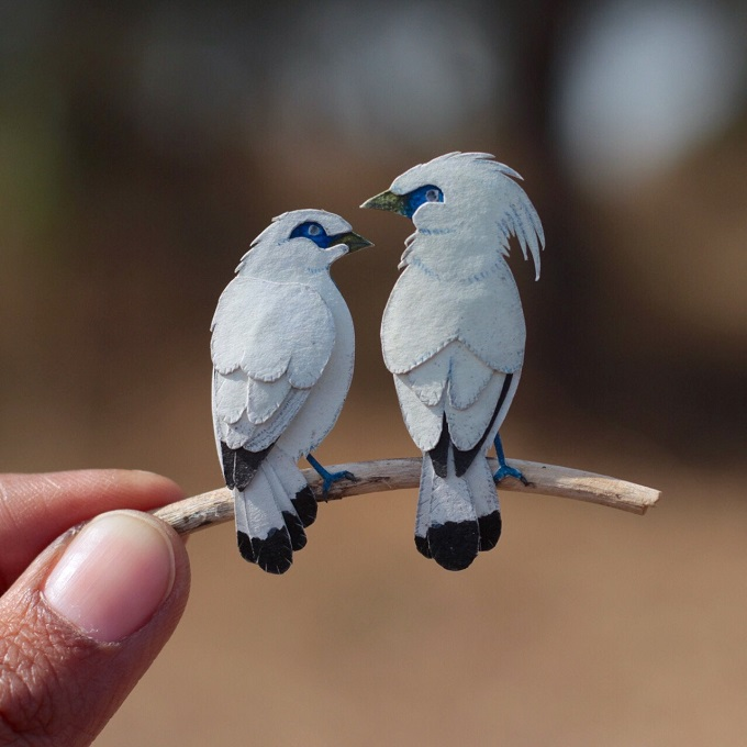 Papercut Birds by Nayan & Vaishali