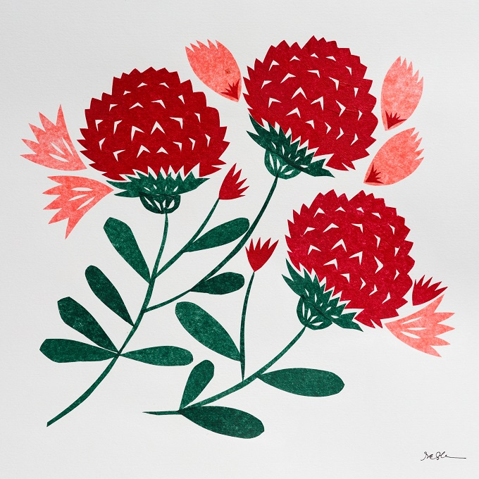 Paper Cut Illustrations by Stacey Elaine