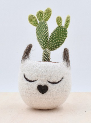 Succulent Cat Planter - The Yarn Kitchen