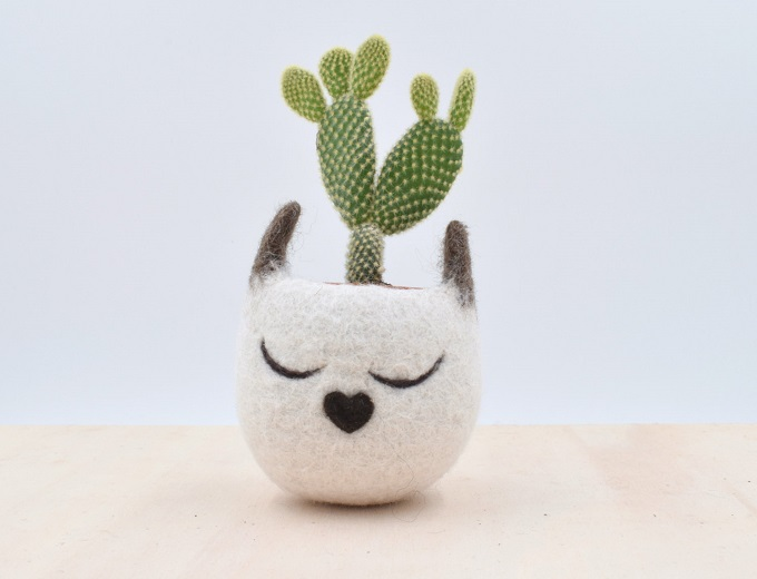 Succulent planter - The Yarn Kitchen