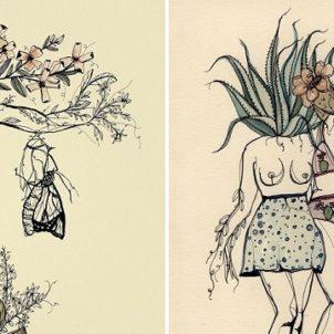 Illustration by Marcy Ellis
