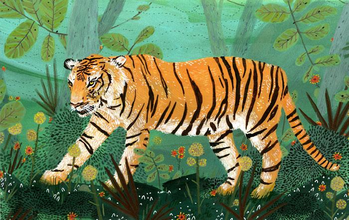 Tiger, by Becca Stadtlander.